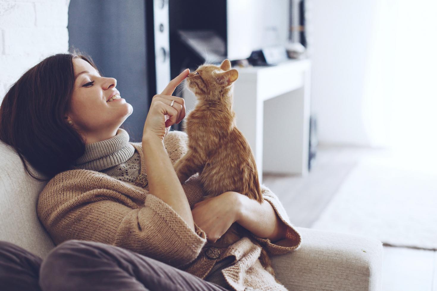 Macskák társkereső oldal