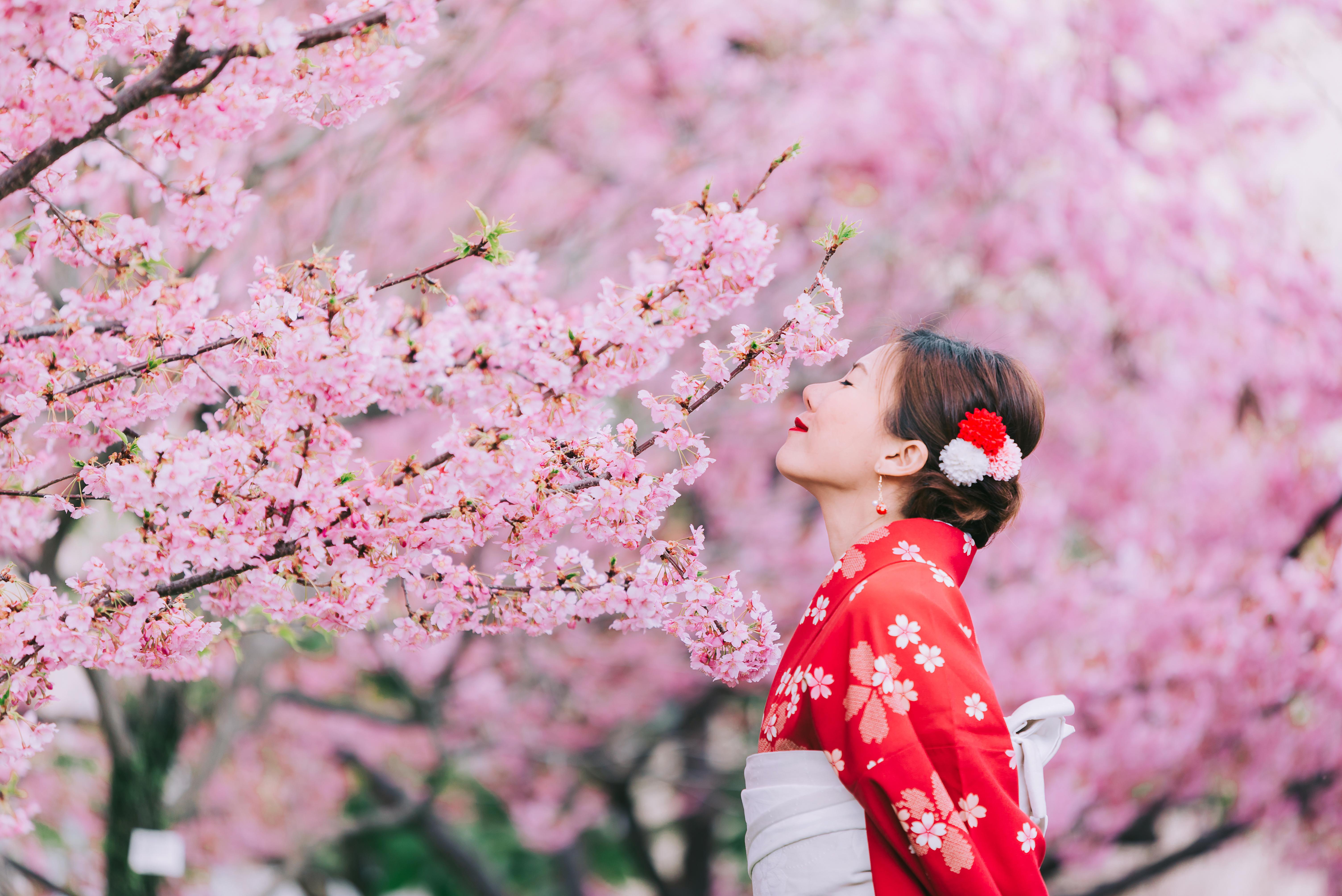 Cseresznyevirág.com társkereső oldal