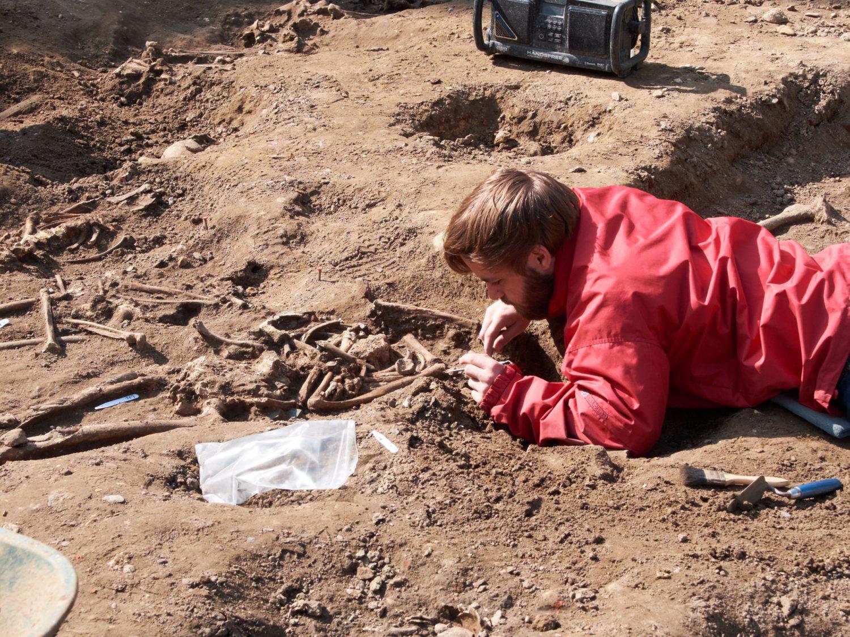 Szászhúszezer éves orrszarvú maradványaira bukkantak Szlovéniában