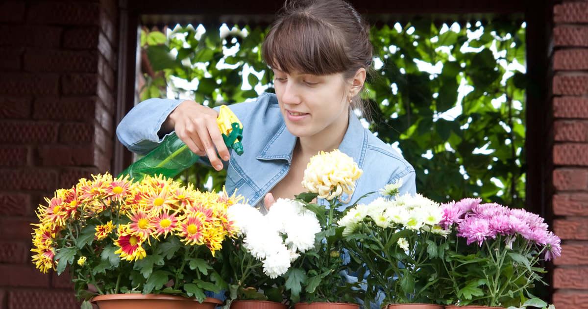 Mutassa meg a csodaszép virágait!