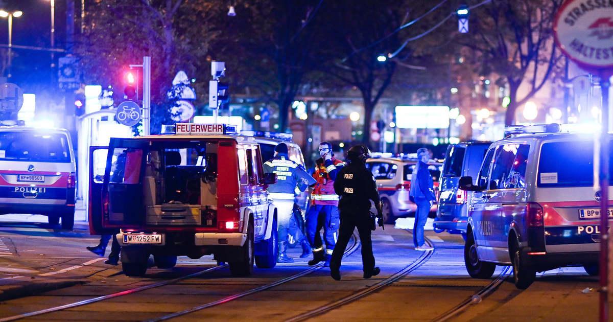 Bécsi terrortámadás, elszaporodott kóbor macskák, félelem a vendéglátóhelyeken – Ezeket olvastátok a múlt héten