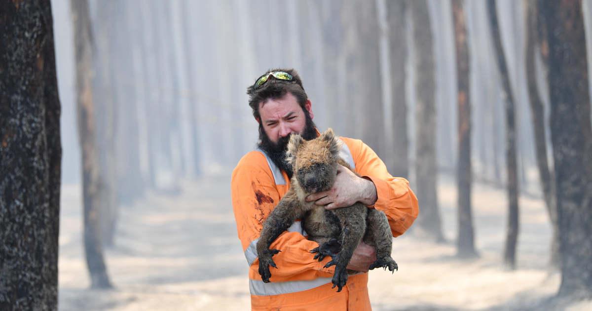 Nagy vulkánkitöréshez hasonló hatást tettek az ausztrál bozóttüzek