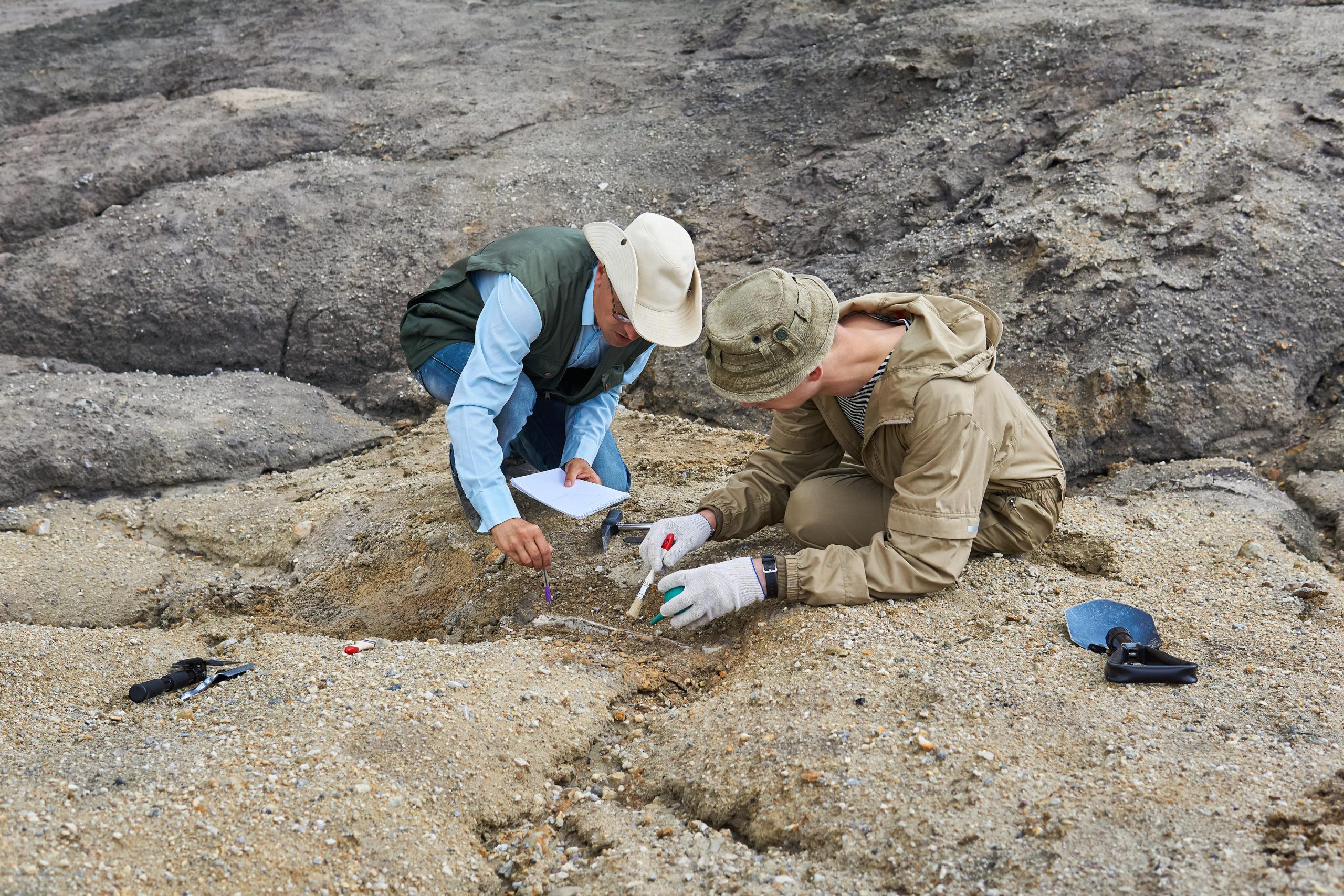 A Föld legkorábbi állati fosszíliáját találhatták meg Kanadában